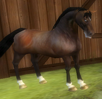 star stable cheats