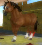 maj liten pony