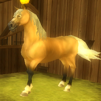 790 Star Coins - Found at Goldenleaf Stables