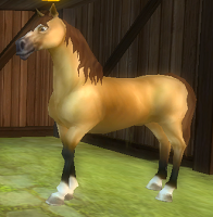 New Horse Guide (6/6)