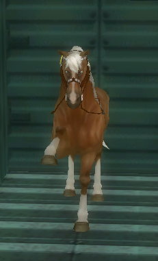 Dark core guard star stable online ride through for Where can i go horseback riding near me